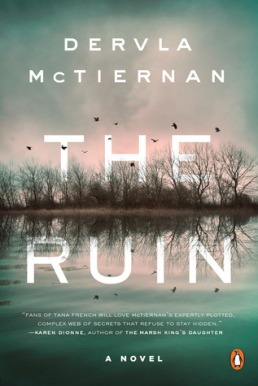 The Ruin, Dervla McTiernan, Cormac Reilly #1, mystery, detective, novel